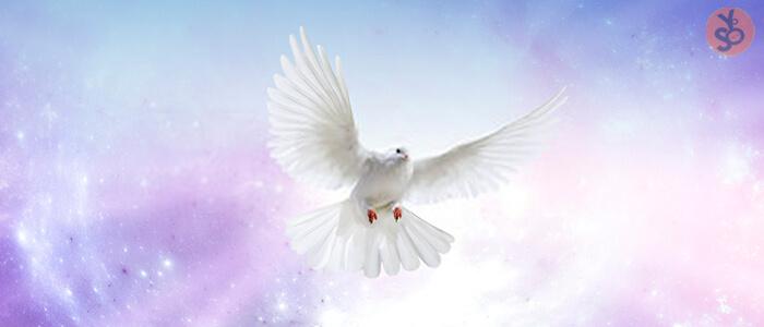 El Bautismo En El Espiritu Santo Doctrinas Asambleas De Dios De Venezuela